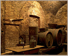 Italian Balsamic Vinegar Made in Modena, Italy